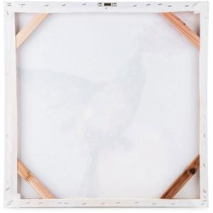 Hummingbird Framed Oil Canvas 50cm x 50cm 5