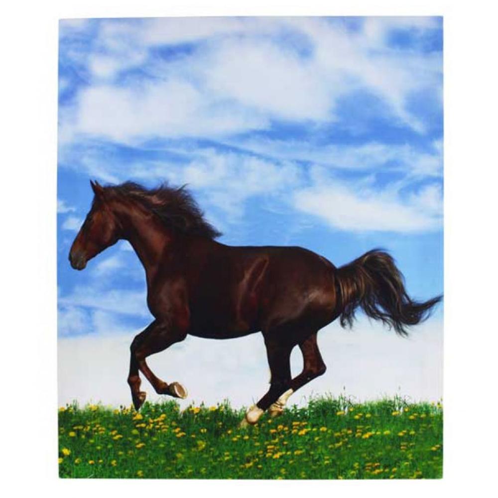 Galloping Horse Print Framed Canvas 46cm x 56cm 1