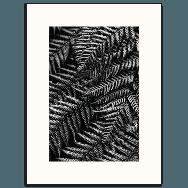Silvern Wall Art | Canvas or Print 4