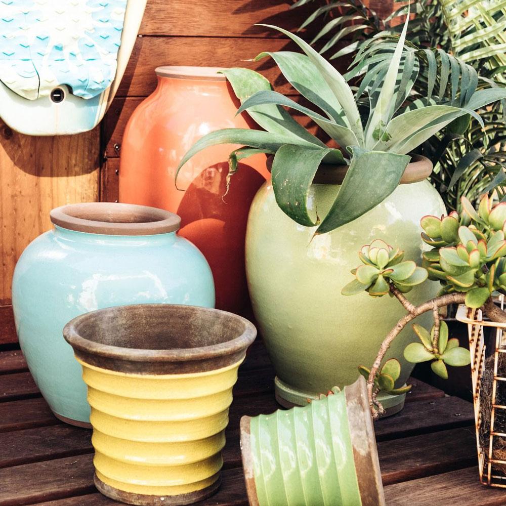 Aloe Terracotta Yellow Pot Planter 18cm Home Shoppe