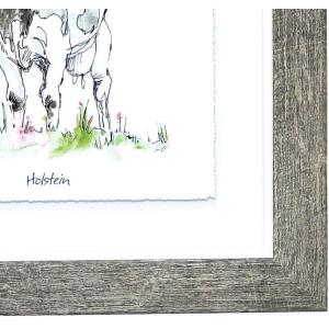 Angus Cow Framed Print Wall Art 25cm Square 5