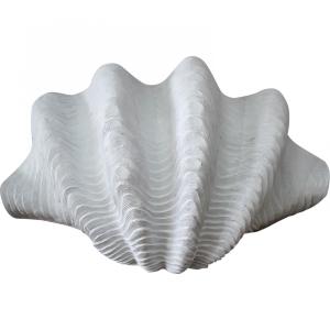 Large White Clam Shell Decor 41cm 4