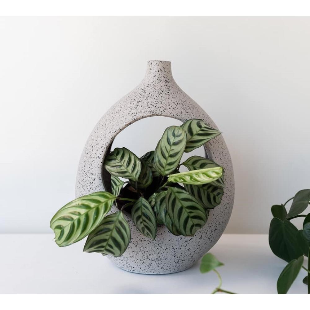 Grey Specked Terracotta Short Planter 2